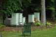 The Westmoreland apiary
